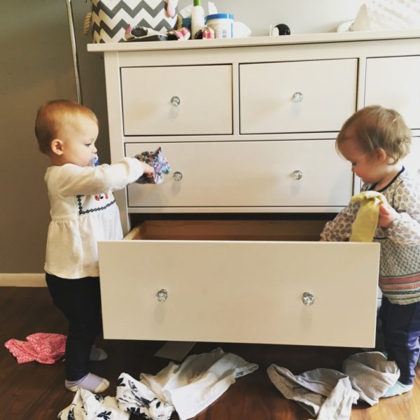 The Double Cart | Duluth Moms Blog