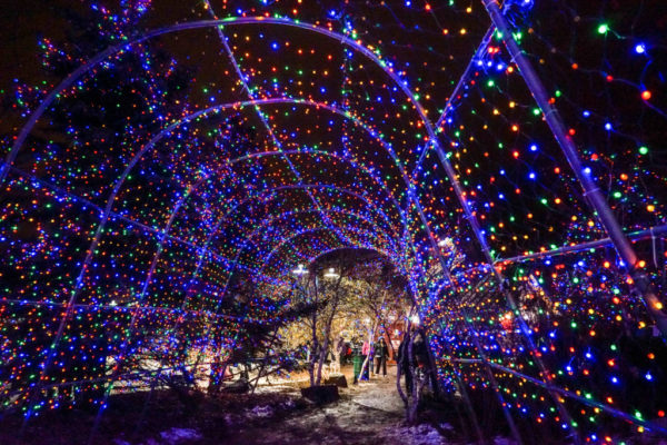 2016 DMB Guide to Bentleyville