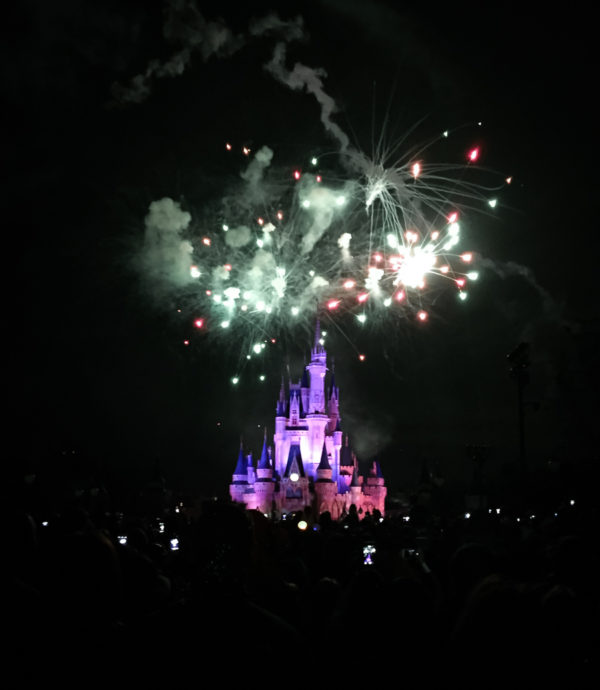 My Walt Disney World Travel Tips | Duluth Moms Blog