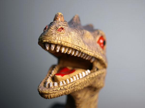 Momasaurus-Rex | Duluth Moms Blog