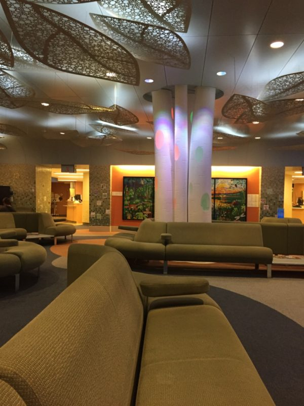 10 Things About the Mayo Hospital | Duluth Moms Blog