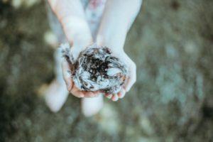 Empty Nester | Duluth Moms Blog