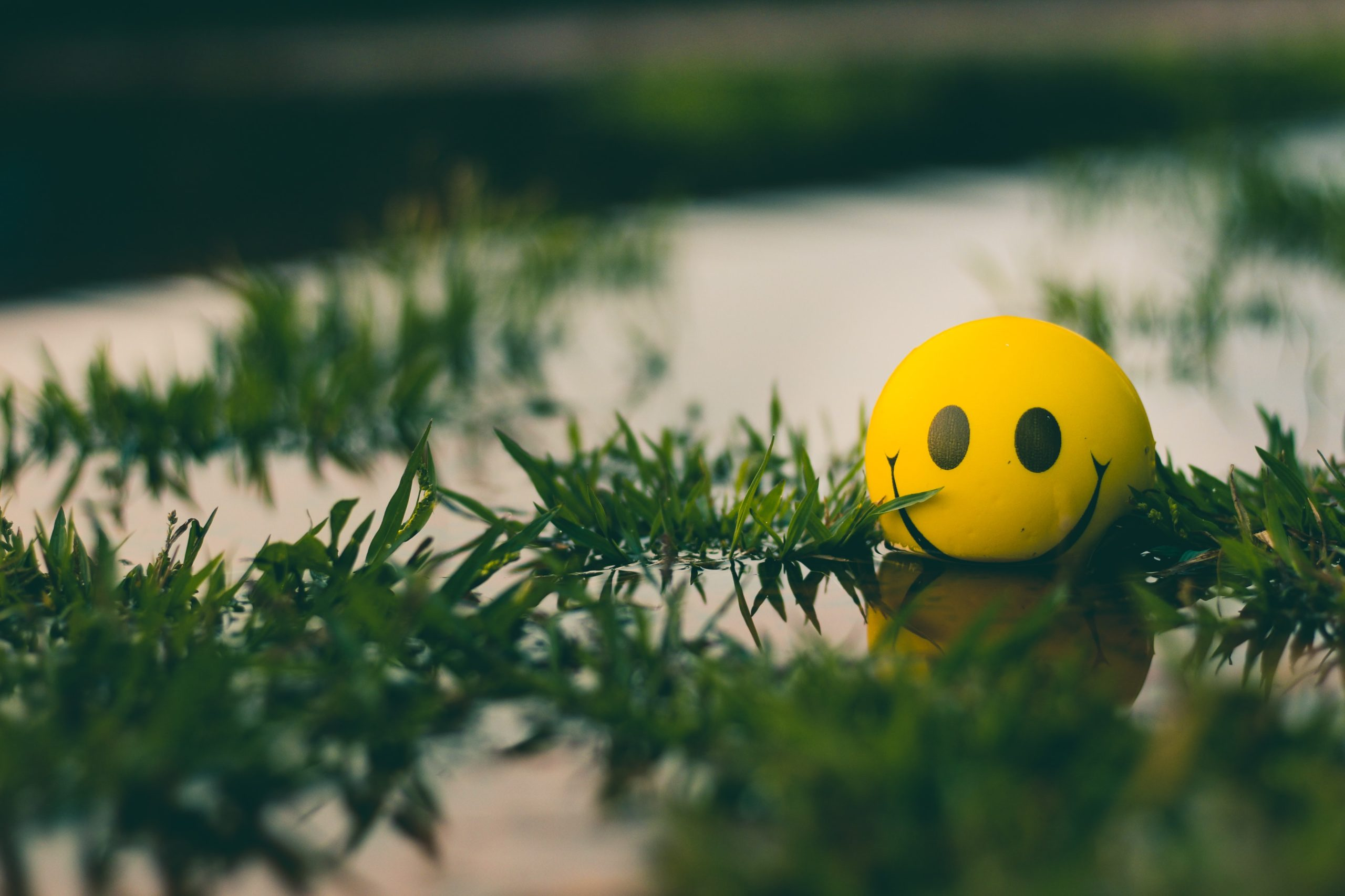 Don't Worry, Be Happy? | Duluth Moms Blog