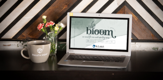 Attend Bloom Duluth Mom