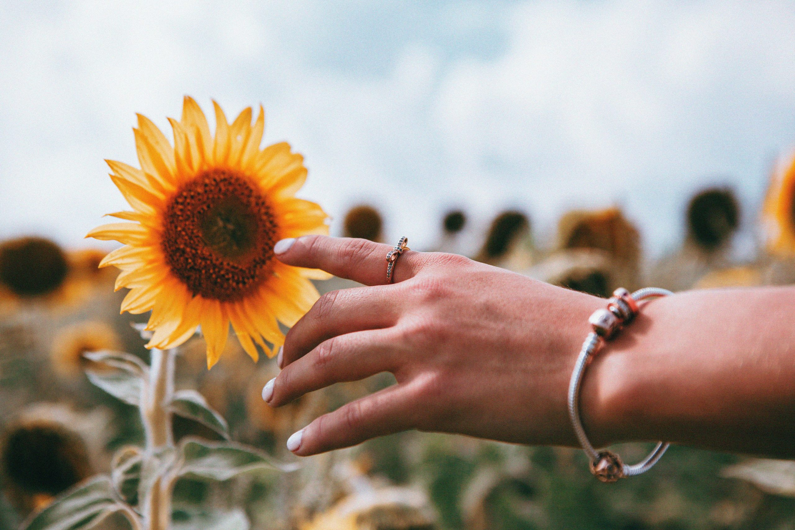Stop and Smell the Flowers: When Family Outings Disappoint | Duluth Mom