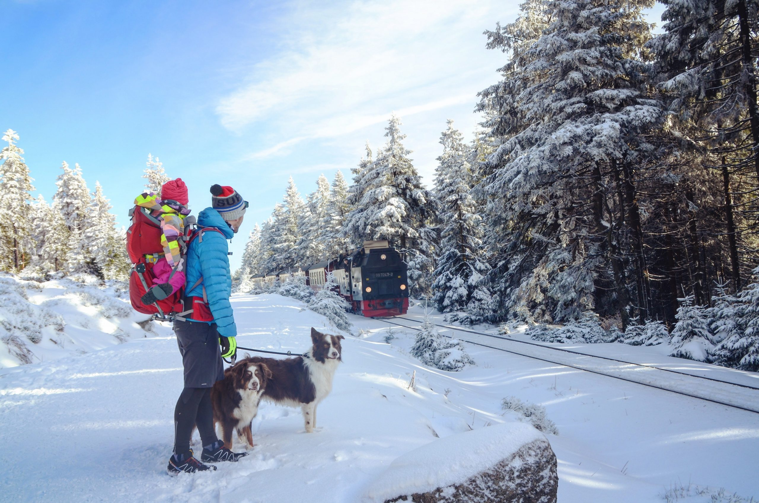 Our Pandemic Winter: Exploring All Duluth Has to Offer Outside | Duluth Mom
